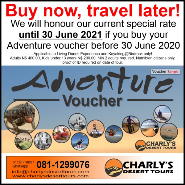 Buy now travel later 2